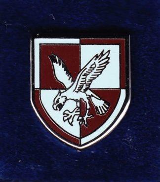 16 AIR ASSAULT BRIGADE lapel badge