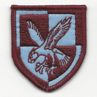 16 Air Assault Brigade patch, colour