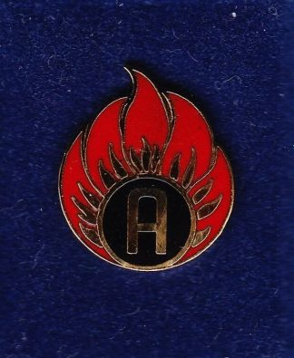 AMMO TECHNICIAN lapel badge