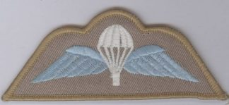 DESERT Para wing, White canopy, Blue wing on Sand