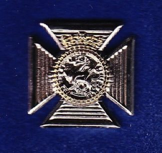 D of E R R lapel badge CAP BADGE enemal