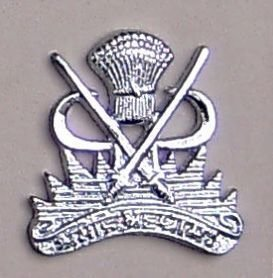 RAGE CORPS nickle plated cast brass cap badge