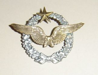 FRANCE - Pilots Badge