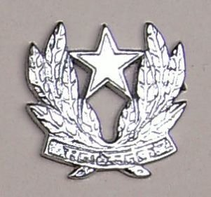 INTELLIGENCE CORPS nickel plated cast brass cap badge