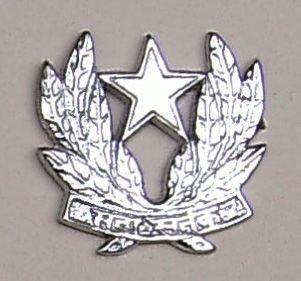 INTELLIGENCE CORPS nickel plated cast brass cap badge
