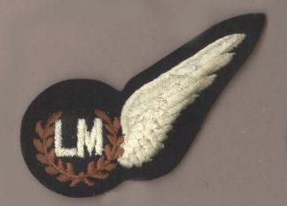 AD MASTER HALF WING machine embroidered