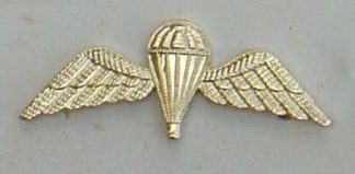 PARACHUTE and WINGS a/a Qualified Parachutist