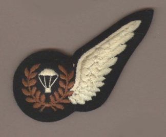 PARACHUTE TRAINING INSTRUCTOR HALF WING embroiderd