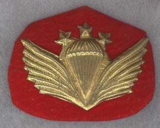 PARACHUTE WINGS metal INSTRUCTOR 3 stars