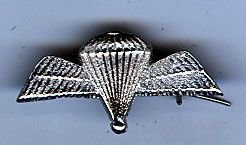 PARACHUTE WINGS  small cast nickel plated