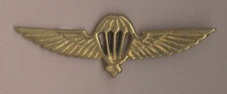 PARA WINGS NEPAL brass