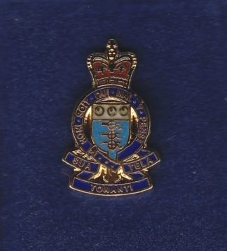 RAOC lapel badge CAP BADGE enamel QC