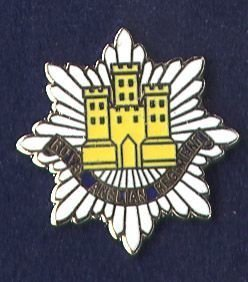 ROYAL ANGLIAN REGIMENT - LAPEL BADGE