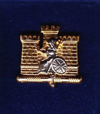 ROYAL ANGLIANS - 1 BN - LAPEL BADGE