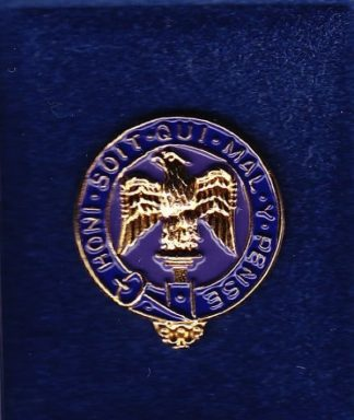 ROYAL ANGLIANS - 3 BN - LAPEL BADGE