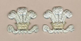 ROYAL WILTSHIRE YEOMANRY? a/a collars, pair LARGE