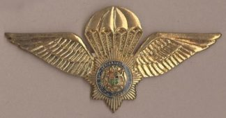 S.A. POLICE WINGS - metal silver wing blue ring