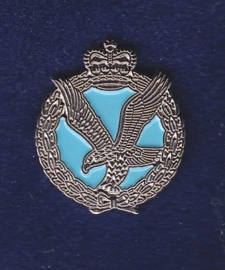 Army Air Corps LAPEL BADGE