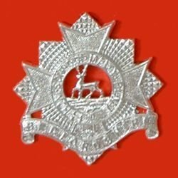 BEDFORDSHIRE REGIMENT a/a cap badge