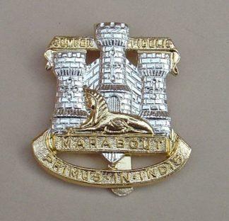 DEVON & DORSET a/a Cap Badge
