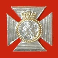 DUKE OF EDINBURGHS ROYAL REGIMENT a/a cap badg