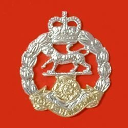 THE ROYAL HAMPSHIRE REGIMENT QC a/a cap badge