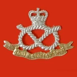 THE SOUTH STAFFORSHIRE REGIMENT QC a/a cap badge
