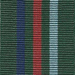 ARMED FORCES VETERAN MEDAL - Full Size